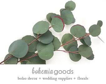 Eucalyptus, Silver Dollar Eucalyptus Stem, Faux Eucalyptus, Eucalyptus Stem, Eucalyptus arrangement, Eucalyptus Wedding,