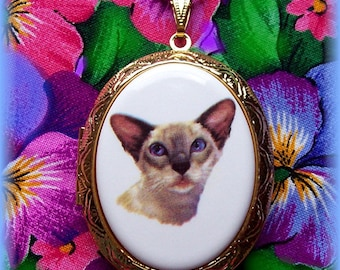 Cats Porcelain Blue Point SIAMESE CAT Feline Pets Cameo Costume Jewelry 40mm x 30mm Goldtone Locket Pendant Necklace Cameo w/ 24 Inch Chain