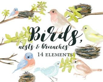 Watercolor Birds, Watercolor Birds and Nests, Watercolor Nests and Branches, Bird Clipart, Nest Clipart, Branch Clipart, Watercolor Clipart