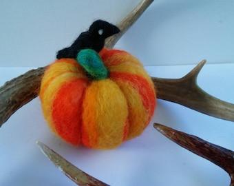 Teeny Cute Blackbird with a Pretty Pumpkin Perch