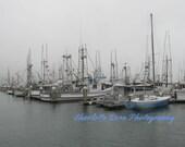 Fishing Boats at Bodega B...