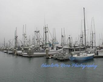 Fishing Boats at Bodega Bay