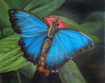 Butterfly Oilcolor Blue Butterfly  Blue Morpho Butterfly Oilpainting