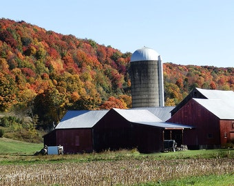 Red Barn in Fall,Fall Photo of Red Barn,Autumn Barn Picture,Picture of Red Barn,Fall Red Barn Photographs,Fall Farm Photos,Autumn Barn Photo
