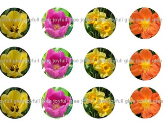 Flower bottlecap images