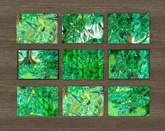 Botanical art postcards in sets of eight