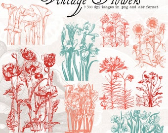 Vintage Flowers, digital clip art and photoshop brushes: Commercial and Personal Use. No 1