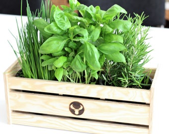 Wooden box for garden herbs suitable for herbal pots A.D. Supermarket birch plywood herb box for balcony or Ikea Grundtal bars