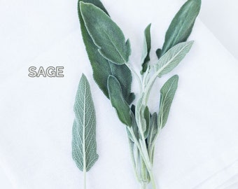 Food Photography - Kitchen Art - Herb Photograph - Sage - Dining Room Decor - Kitchen - Fine Art Photography Print - Green White Home Decor