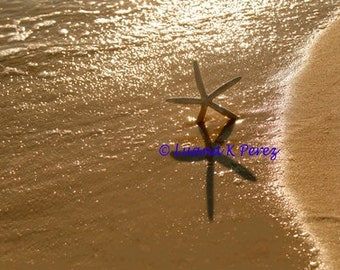 Starfish Beach Dance
