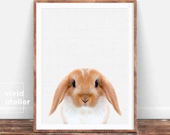 Woodlands Nursery, Bunny Print, Bunny Rabbit Art, Rabbit Wall Print, Nursery Print, Rabbit Print Art, Woodland animals, Nursery Woodland Art