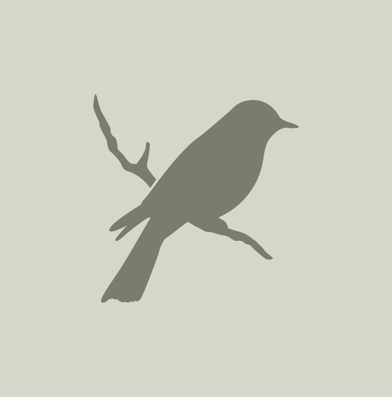 Pochoir d 39 oiseau silhouette d 39 oiseau pochoir en for Pochoir oiseau
