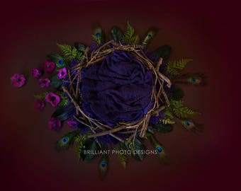 Beautiful Digital Photography Background for Newborn ~ Nest with Flowers