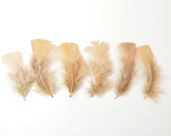 12pcs Turkey Flat Feathers-Dark Beige