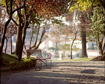 Porto, Photography Giclee Print, Limited Edition, Analog, Square Art, Large Scale, City Decor, Park Bench, Autumn Sunlight, Colorful, Trees