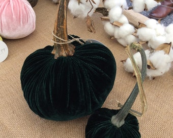 Emerald Green Velvet Pumpkins with Real Pumpkin Stems and Feathers