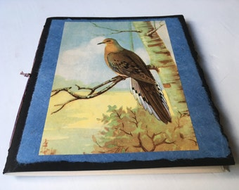 Mourning Dove notebook , blank booklet, pamphlet-bound notepad, cotton multi-media paper, blank chapbook, hand stitched journal