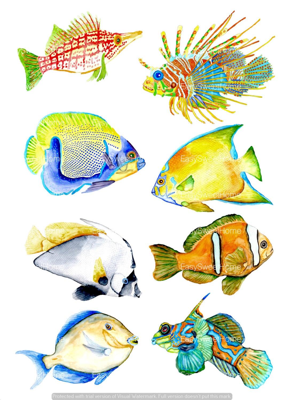Watercolor coral reef fish decals bathroom tile wall - Fliesenaufkleber fische ...