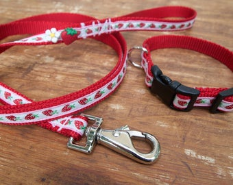 Strawberry Red Dog Collar and Leash Set, red dog collar and leash, dog collar for girl, cute dog collar, collar and leash set
