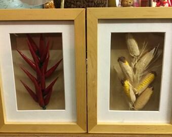 Shadowbox frame chili pepper and corn
