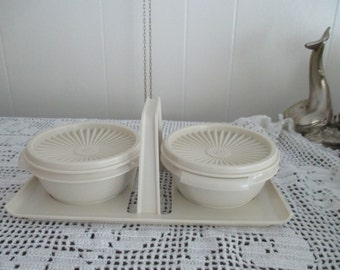 Beautiful tray with 2 serving bowls Tupperware  plastic Picnic
