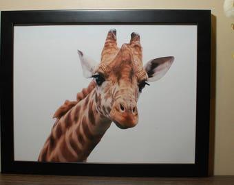Print #5 - Giraffe Print - Beautiful Prints - Colourful
