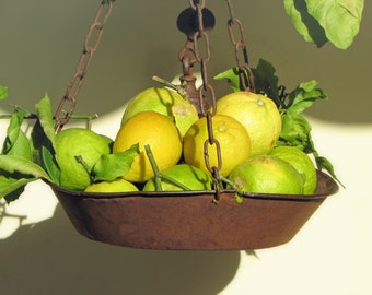 Italian Lemons, fresh limes, kitchen art, kitchen photography, Amalfi Coast, Italy, yellow lemons,  travel photography, fine art photography
