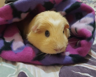 Guinea Pig Cuddle Sack