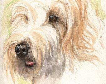 original watercolour painting- portrait of a dog