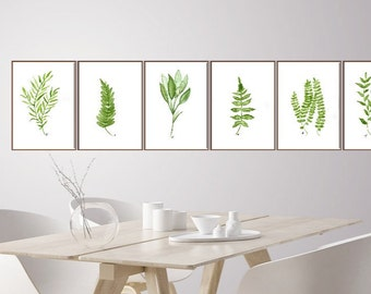 Fern Art Print Set 6 Prints  Botanical Prints Light Green Plants Kitchen Living Room Large Poster, Wall Art Watercolor Painting, Mothers Day