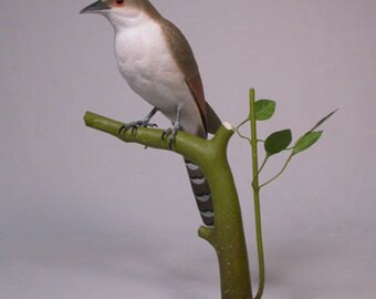 "10"" Black-billed Cuckoo Wood Bird Carving"