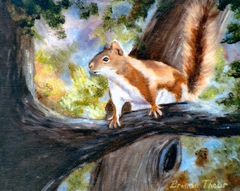 Sqirrel in Tree  Open Edition Print