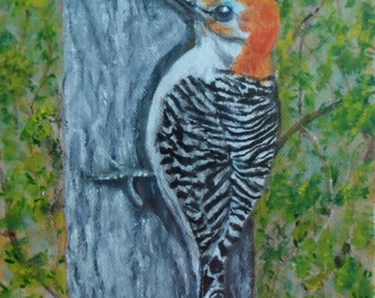 Woodpecker Painting Woodpecker Canvas Painting Woodpeckers Woodpecker Acrylic Painting 6 inch x 6 inch