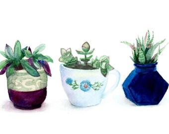 Watercolor Succulents Print 8 x 10