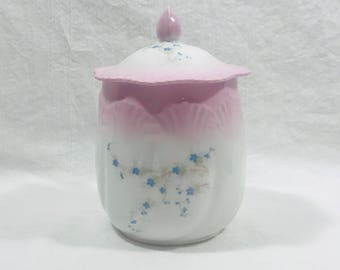 Vintage Hand Painted Porcelain Biscuit Jar