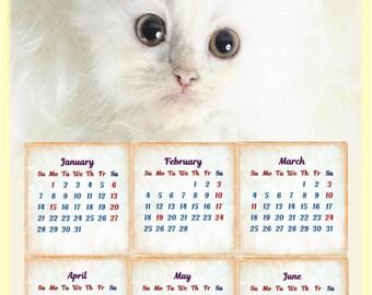 Calendar, digital calendar 2018, printable calendar, cat calendar, new year, animal calendar,  desk calendar, yearly calendar