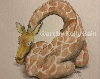 Giraffe napping