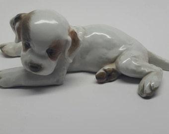 Rosenthal Porcelain Terrier DogBlack Friday Sale