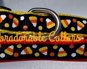 Halloweeen Dog Collar Candy Corn Dog Collar Collection