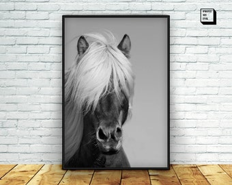 horse print, icelandic horse, horse photography, horse art, printable horse, horse wall art , black and white photography, horse poster