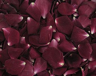 Merlot Rose Petals. 50 Cups. Flower Petals. Flower Confetti. Flower Girl Petals. Wedding Petals.Freeze dried Petals. Rose Petals. Petals USA