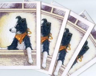 4 x Border Collie dog greeting cards - I am soooo cool