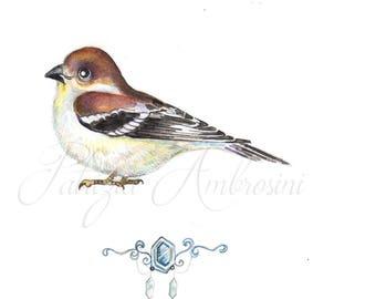 Original  Watercolor,7x9 handpainted sparrow #04. NOT A PRINT ..Original Painting, bird