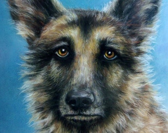 "SAMPLE of Fine Art, Soft Pastel, ""HARRY"" 16 x 20, Commission your Pet Portrait today"