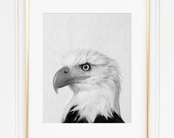 Bald Eagle Print, American Eagle Wall Art, Black And White Animal Print, Modern Minimalist, Bird Instant Download, Patriotic Printable