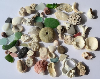 60 pieces of Beach Finds   Sea Glass   Coral   Shells   Arts and Crafts Material   Mobile Accessories Bulk