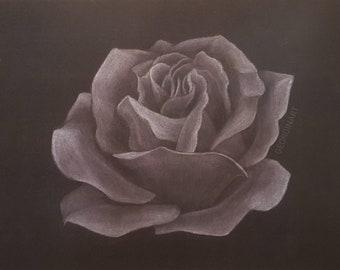 Pastel Rose - Art Print