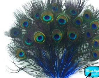 Hair Feathers, 10 Pieces - ROYAL BLUE MINI Natural Peacock Tail Body feathers with Eyes : 3910