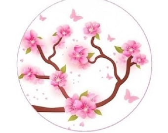 20mm, pink cherry blossoms