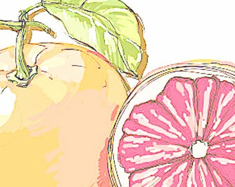 Organic Grapefruit Essential Oil   Pure Essential Oil   Citrus Essential Oil